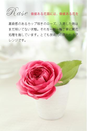 プリザーブドフラワーギフト/フランリュール