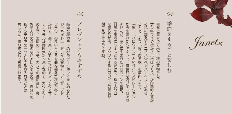 ハロウィン/インテリア/クリスマス/秋冬