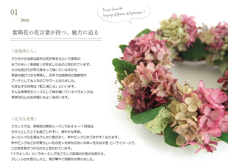 あじさいリース 紫陽花