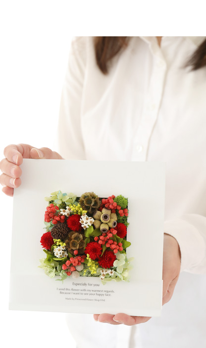 プリザーブドフラワー フレーム 春 千日紅 アレンジメント ワイルドフラワー wildflower