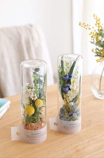 プリザーブドフラワー テラリウム  ガラスドーム 千日紅 インテリアグリーン アレンジメント ワイルドフラワー wildflower