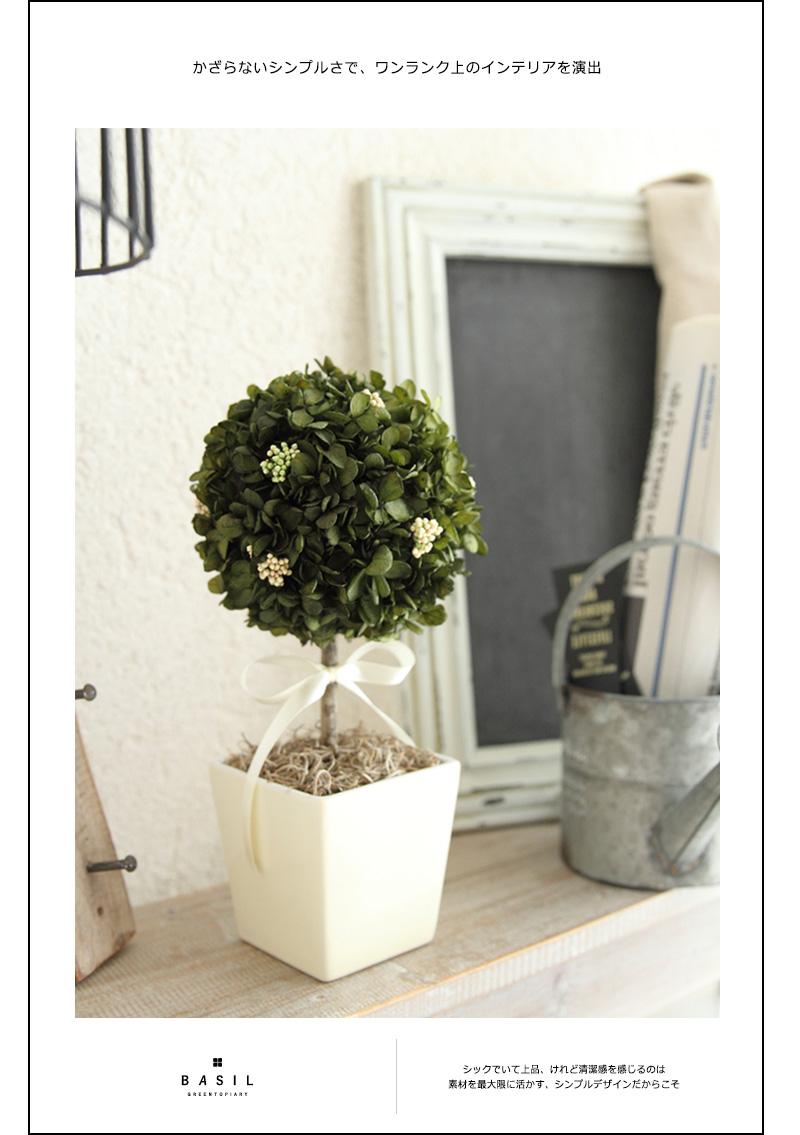 バジルグリーントピアリー|インテリアグリーン/開業祝い/開店祝い/引越し祝い/新築祝い/観葉植物【有料バッグ:L対応】