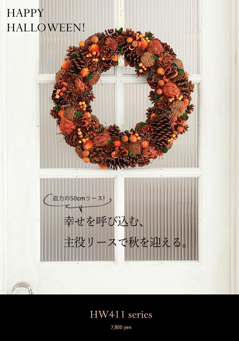 秋のドライリース