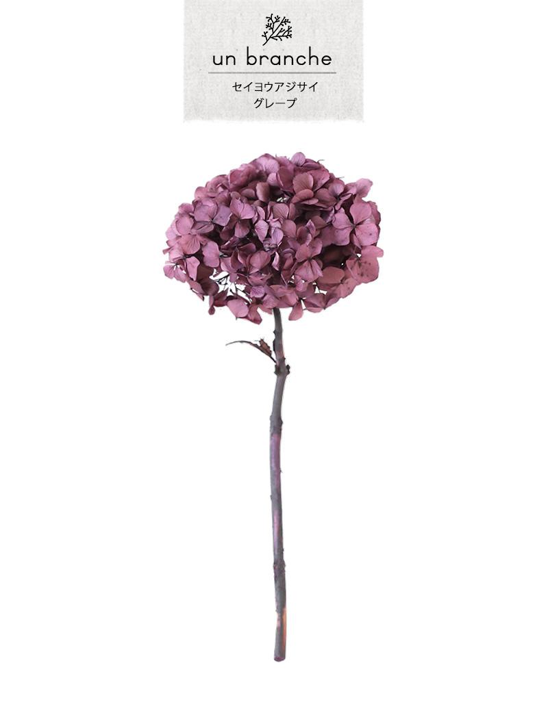 花材 プリザーブドフラワー