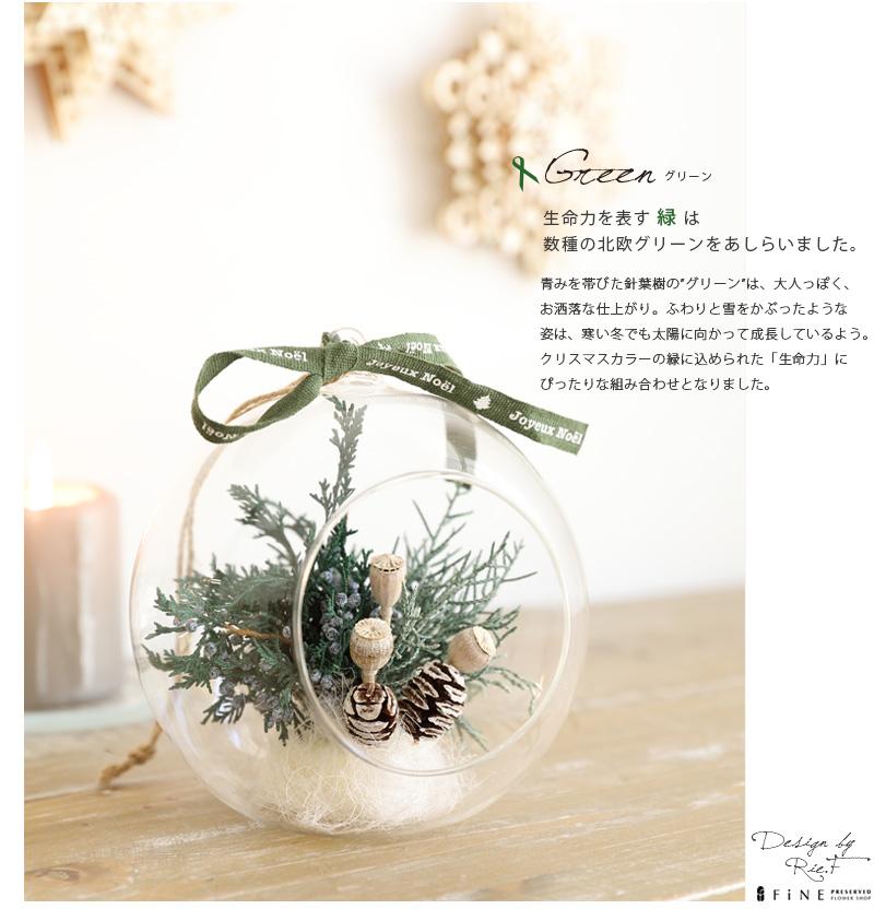 クリスマス テラリウム